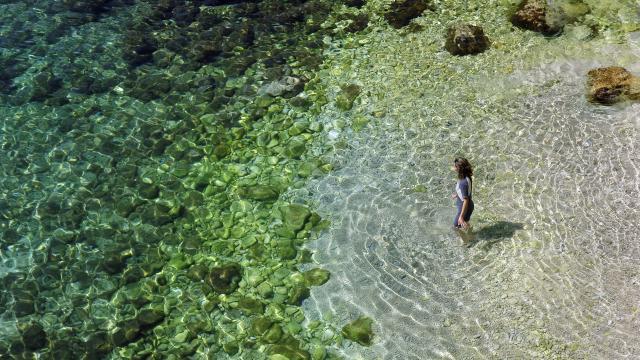 Baignade dans l'eau turquoise des Calanques de Marseille