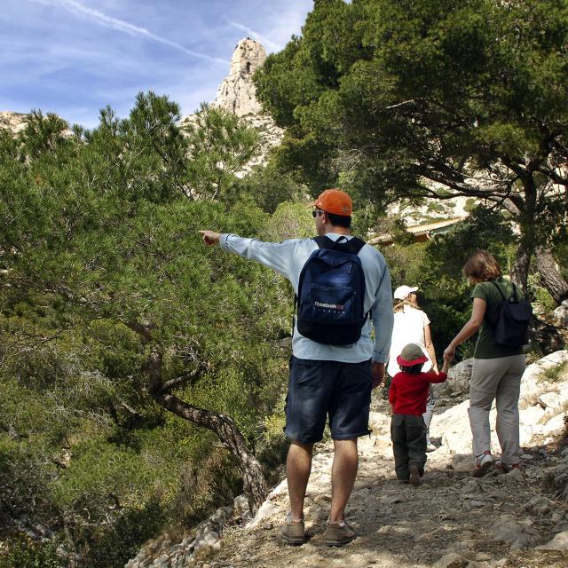Promeneurs en famille sur le sentier des Calanques, entourés de pins
