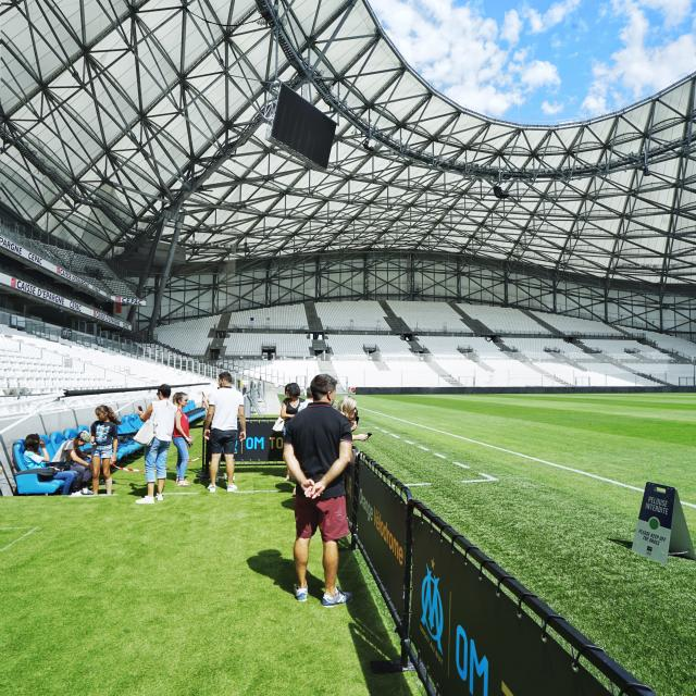 Visite du stade Orange Vélodrome, pelouse