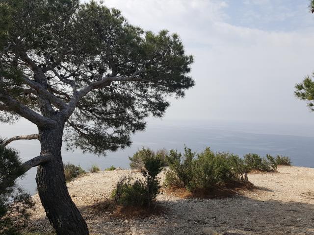 Chemin de randonnée sur la côte Bleue, chemin des douaniers