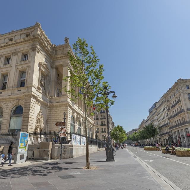 La Canebière et Chambre de Commerce et d'industrie de Marseille