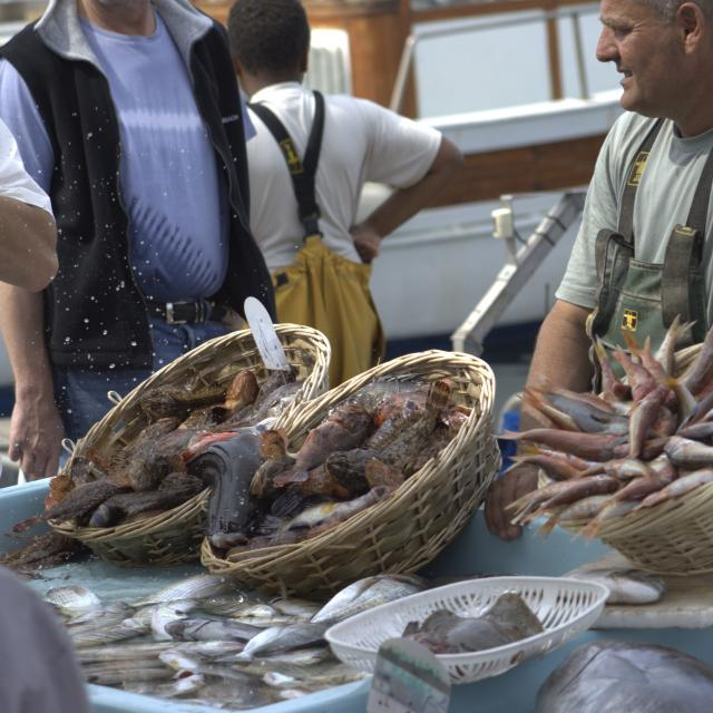 Poissonier sur le marché aux poissons du Vieux-Port à Marseille