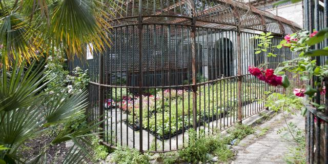 palais-longchamps-anciennes-cage-zoomicaleffotcm.jpg