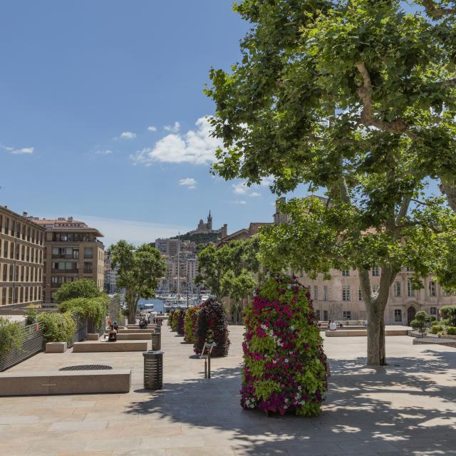 Place Bargemon quartier du Panier à Marseille, vue sur Notre Dame de la Garde en arriere plan