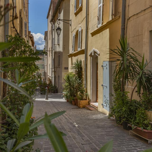 Ruelle végétalisée dans le quartier du Panier à Marseille