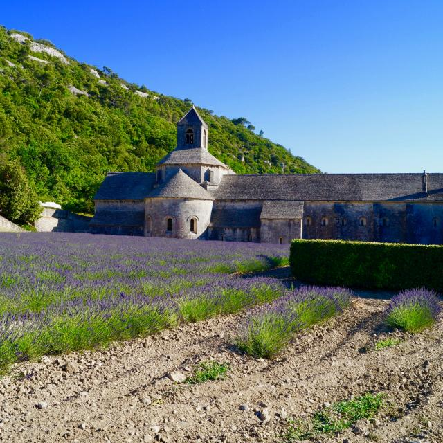 Provence@unsplash
