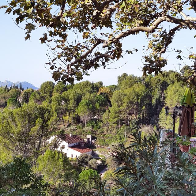 vue sur le vallon et la foret du village de la treille
