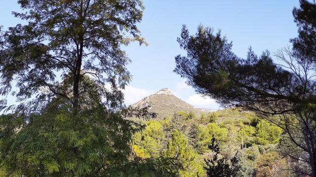 colline de Marcel pagnol