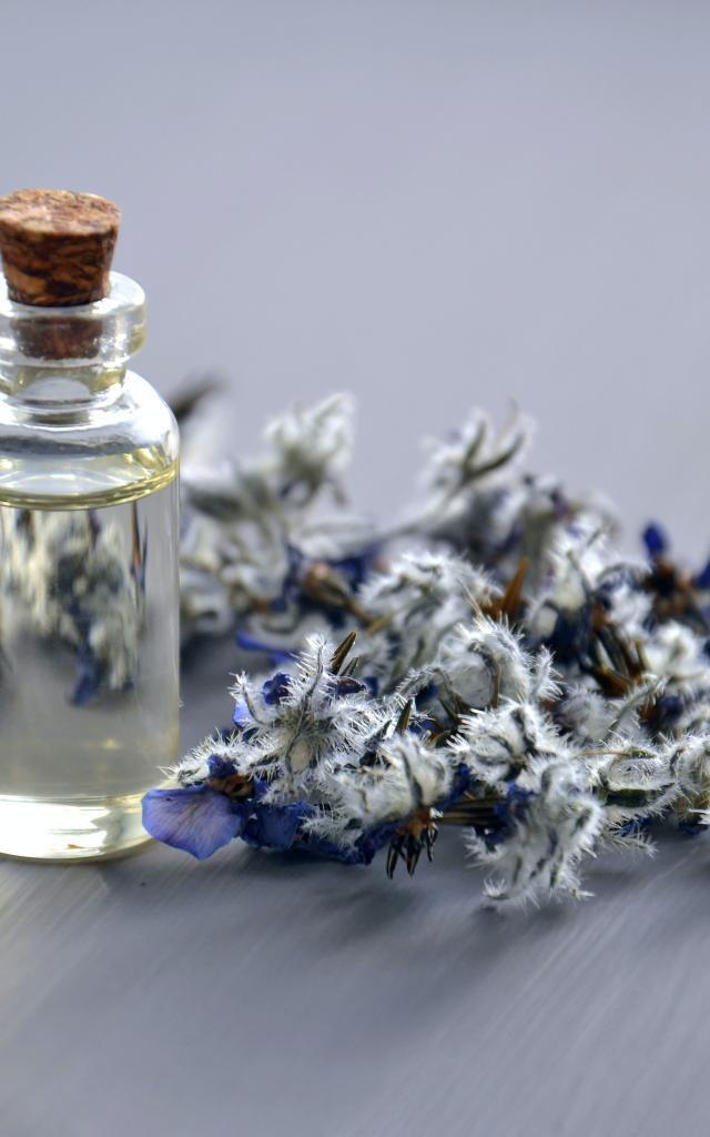 Fiole de parfum et plantes Médicinales
