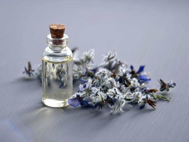 fiole-parfum-plante-medicinalemareefepexels.jpg