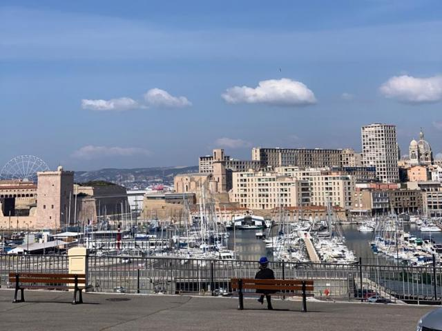 vue sur le vieux port depuis l'Abbaye Saint victor