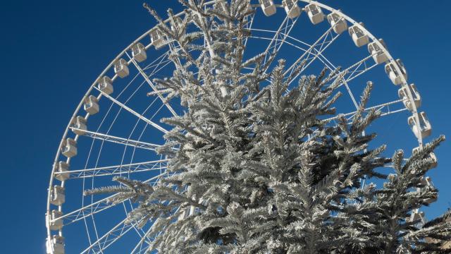 Grande roue et sapin de noel sur le Vieux-Port