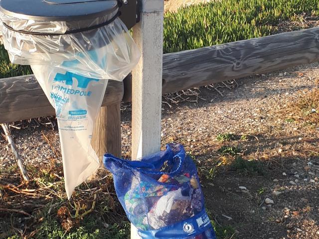 Poubelle et déchets ramassés en bord de mer