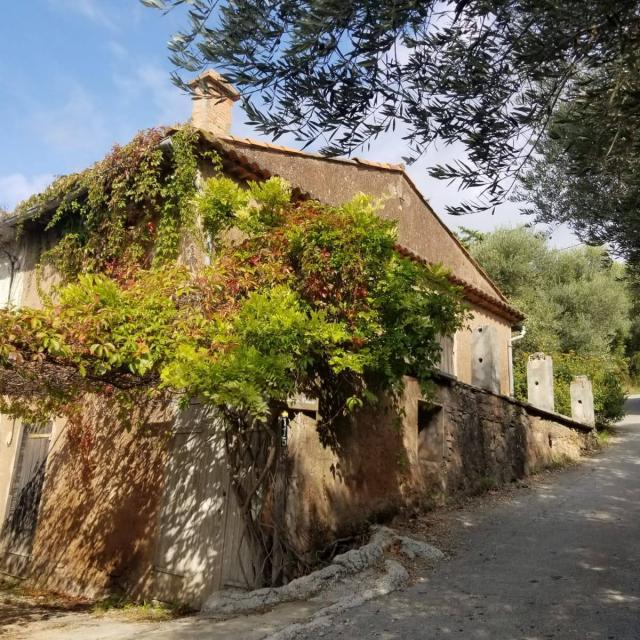 Village De La Treille