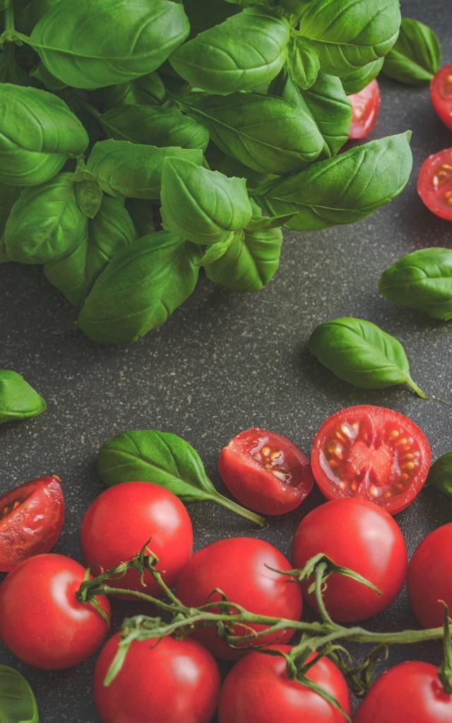Basilic et tomates cerises sur une table