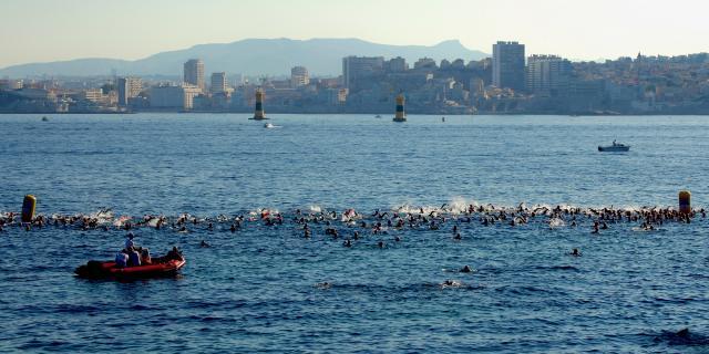 Nageurs dans la rade de Marseille