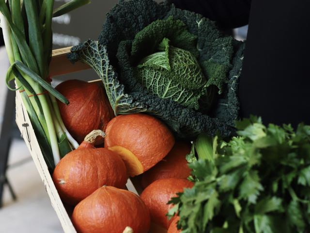 spok-legumes-de-saison-mona-grid.jpg