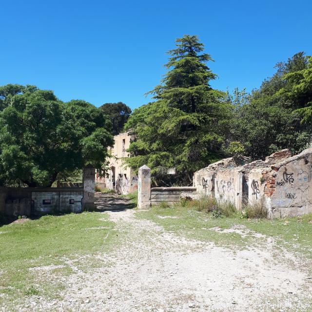 Domaine Cossimont