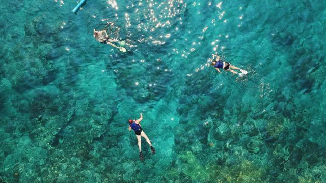 snorkeling-taylor-simpson-unsplash.jpg
