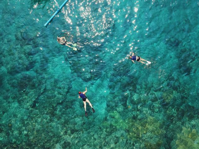 Personnes qui font du snorkeling