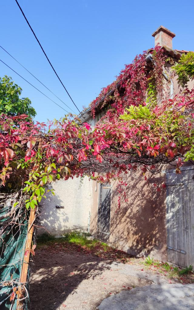 Visite Guidée, La Treille ©etotcm (9)