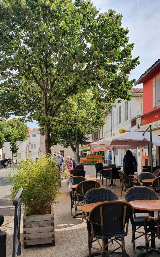 visite-guidee-mazargues-joomtcm-44.jpg