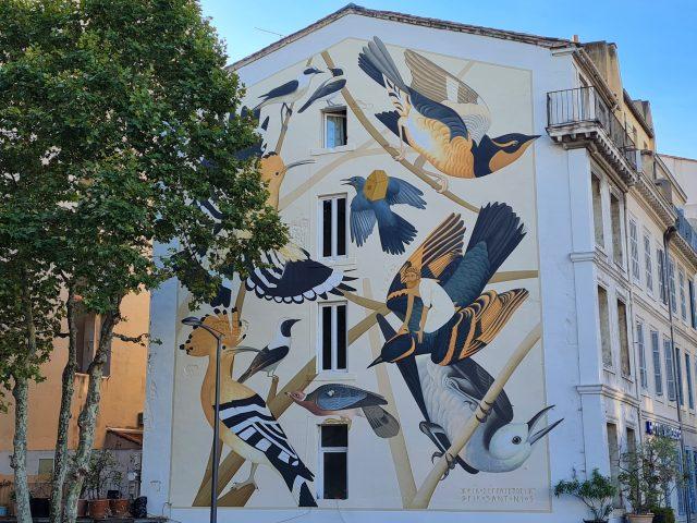 fresque à la gare saint-Charles, oiseaux colorés